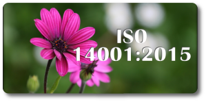 ISO 14001.2015